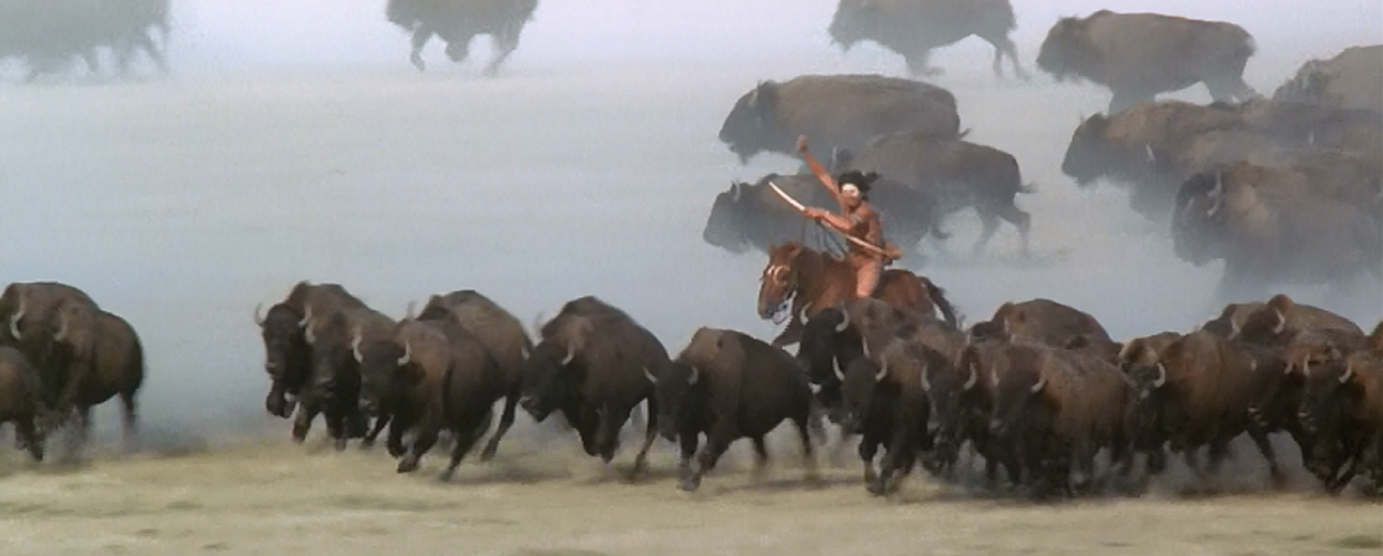 essay on dances with wolves
