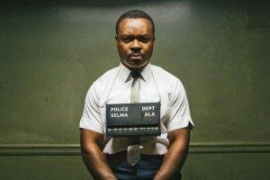 Selma 7