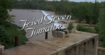 Fried Green Tomatoes 8