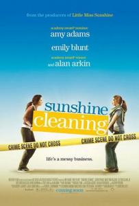 Sunshine Cleaning 1