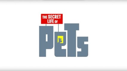 The Secret Life of Pets 8